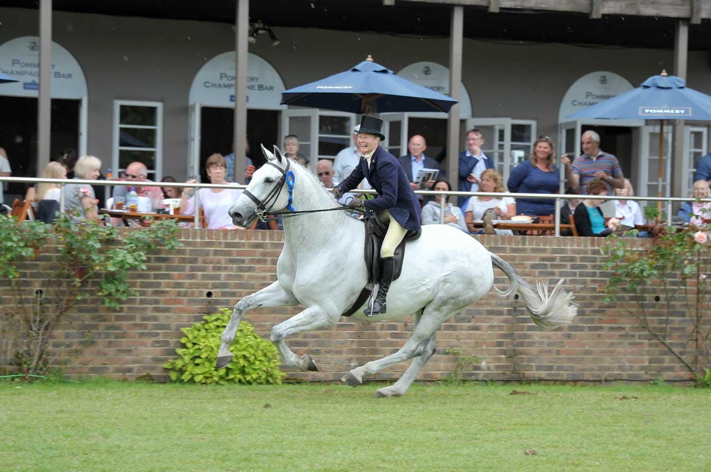 Planx Equestrian Photography - hi50620